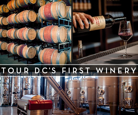 District Winery Tours Mobile